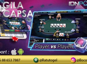 Poker Online IDN Poker